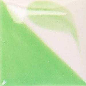 171 Light Kelp Concept
