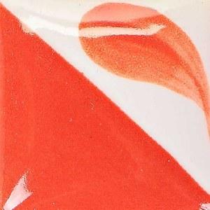 506 Neon Coral Concept DISC