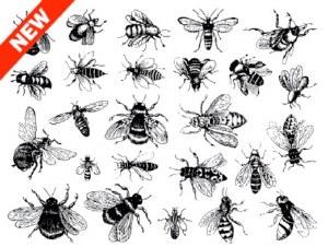 Bee Decals Black