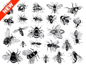 Bee Decals White
