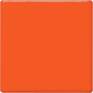 Carrot Pint