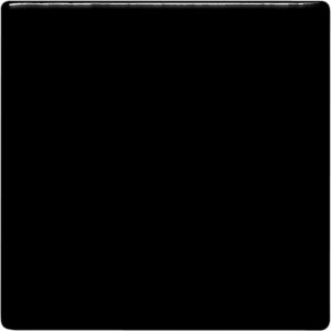 Coal Black Pint