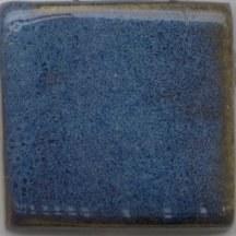 Croc Blue Pint