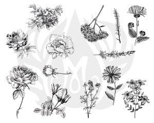 Flowers Silk Screen