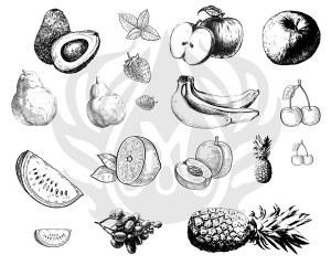 Fruits Silk Screen