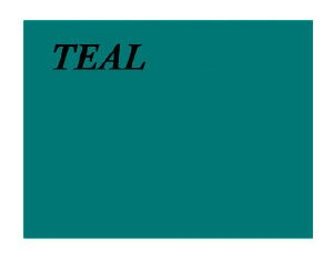 Full Color Decal 8.5x11 Teal