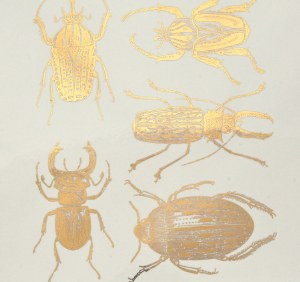 Gold Luster Decal, Scarab