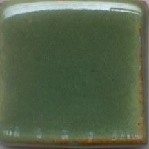 Green Shino Pint