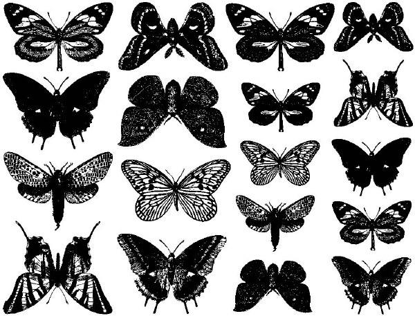 Large Butterflies Decals BlkDI