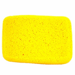 Synthetic Sponge Rectangle