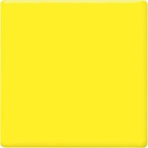 Lemon Pint