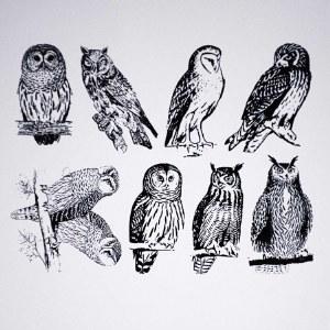 Owls Decals Black