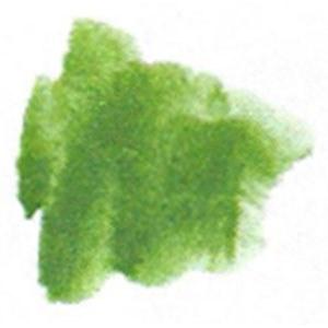 Semi-Moist Warm Green Refill