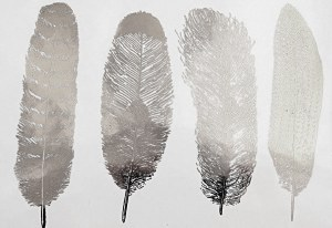 Silver Luster Decal, Feathers