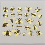 Luster Color Bees Black/Gold