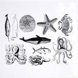 Sea Life Decals Black