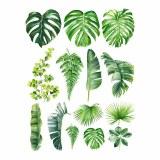 Overglaze Decal-Palm Leaf