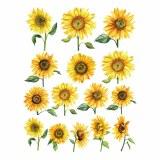 Overglaze Decal, Sunflower