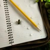 Mini Stapled Notebook 3pkDISC