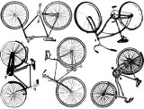 Bike Cone 6 Decal