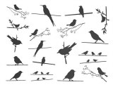 Birds on the Wire Decals Black
