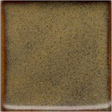 Coyote Walnut 1 Gallon