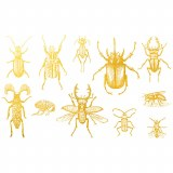 Gold Luster, Bugs 1