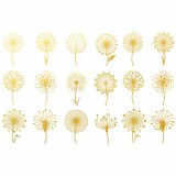 Gold Luster, Dandelion