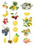 Overglaze Decal Fruits