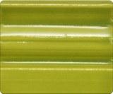 S1273 Bright Green Pint