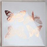 Silv Luster, LG Butterflies