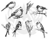 Small Birds Silk Screen