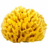 Sea Wool Sponge Large
