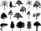 Trees Decals Black