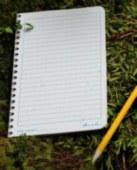 Level Stapled Notebook 3pkDISC