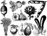 Vegetables Decals Black
