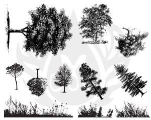 Trees & Grass Silk Screen