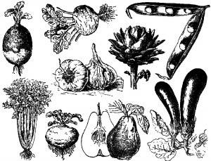Vegetables Decals Black