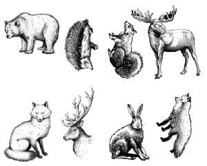 Woodland Animals Silk Screen