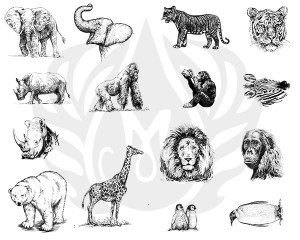 Zoo Animals Silk Screen