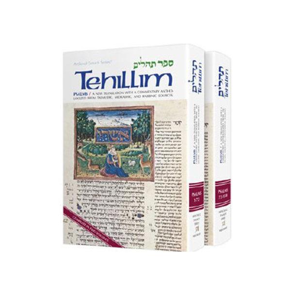 Books on Tehillim - Psalms