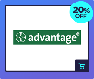 200703_advantage.png