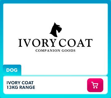 Ivory Coat Dog