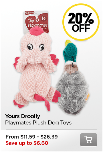 Yours Droolly Toys