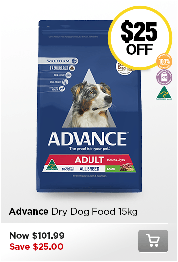 Advance Dog