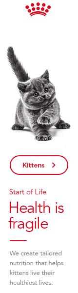 Royal Canin Kitten Side