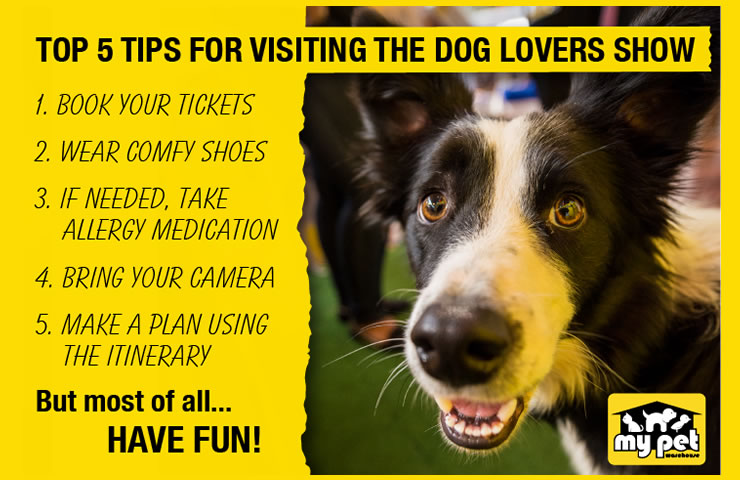 Top 5 Tips when attending the Dog Lovers Show