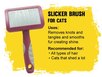 Grooming Slicker brush for cats