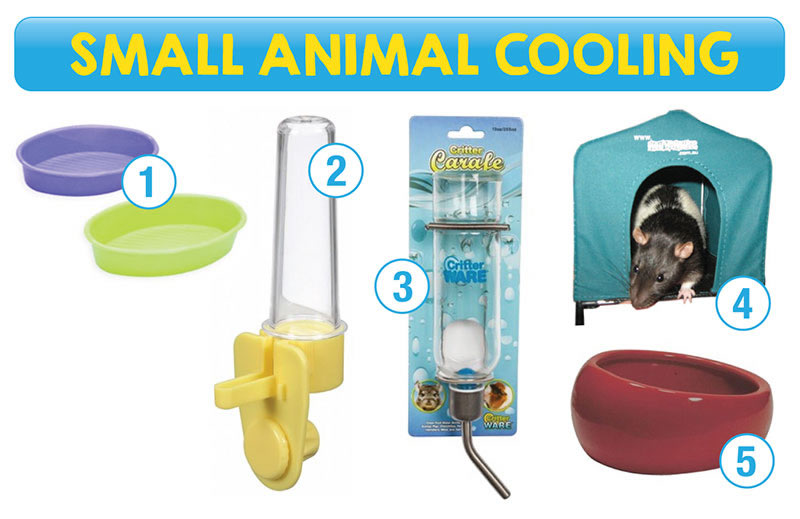 Small animal cooling