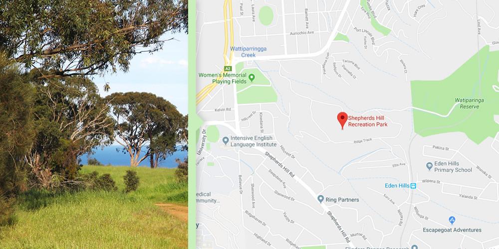 Dog Walks Adelaide - Seaview Loop